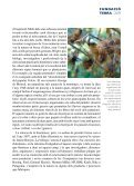 perspectiva ambiental - Page 5