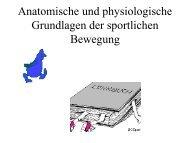 Anatomische und physiologische Grundlagen der sportlichen ...