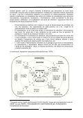 Bastiment 'meso' - Ateneu - Page 2
