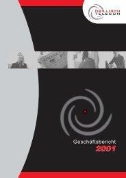 Konzernabschluss 2001 - Drillisch AG