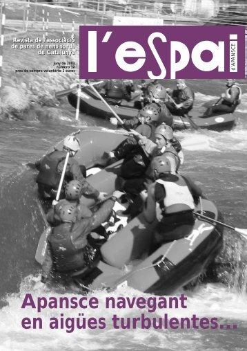 Revista l'espai n. 12 - APANSCE