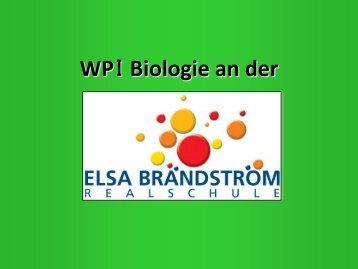 WPI Biologie an der