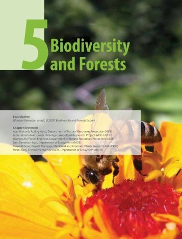 Biodiversity and Forests