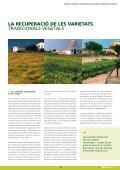 Dossier Tècnic número 29 - RuralCat - Page 3