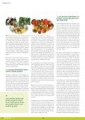 Dossier Tècnic número 29 - RuralCat - Page 4