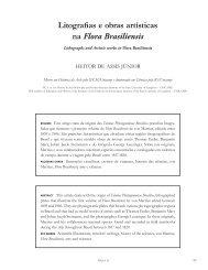 Litografias e obras artísticas na Flora Brasiliensis - Unicamp