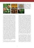 la col brotonera (Brassica oleracea L.) - Fundació Miquel Agustí - Page 6