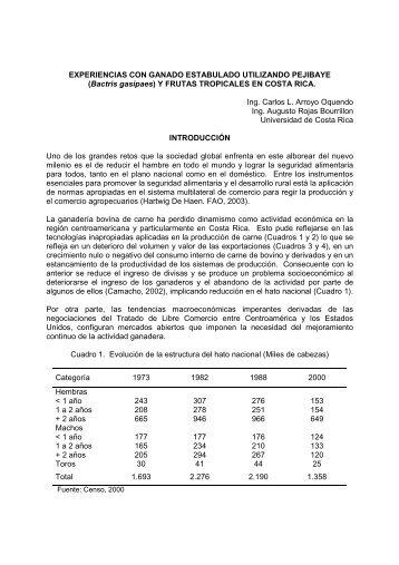 experiencias con ganado estabulado utilizando pejibaye - CORFOGA