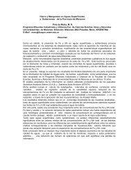 Hierro y Manganeso en Aguas Superficiales y Subterránea ... - bvsde