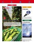 plantar ideias - Editora Definição - Page 4