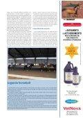 O cavalo atleta - Veterinária Actual - Page 4