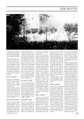 2,3 Mb - Revista Catalunya - Page 5