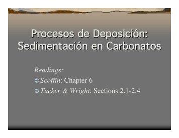 Procesos de Deposición: Sedimentación en Carbonatos Procesos ...