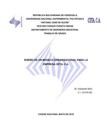 diseño de un modelo organizacional para la - Monografias.com