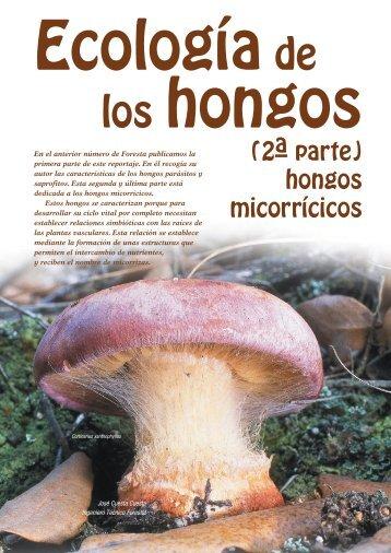 ECOLOGÍA DE LOS HONGOS (2ª Parte)