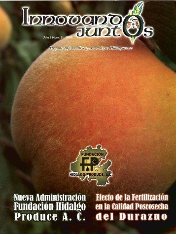 Nueva Aqminisiración tiesto de la fertilización - fundacion hidalgo ...