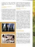 Nueva Aqminisiración tiesto de la fertilización - fundacion hidalgo ... - Page 7
