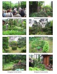 Waldgarten Guenther Alle Bilder aus 2007