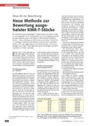 Neue Art der Berechnung - GEF Ingenieur AG