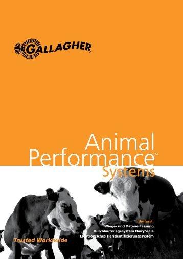 Brochure - Gallagher