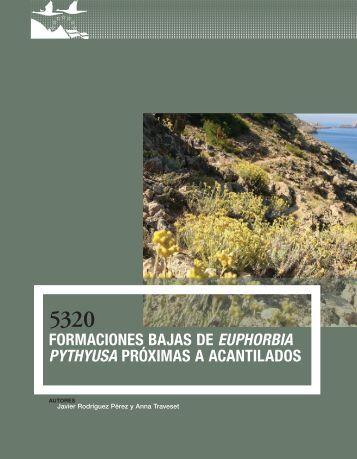 Formaciones bajas de Euphorbia pythyusa próximas a acantilados
