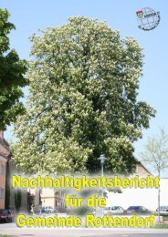 Agenda 21 - Nachhaltigkeitsbericht für die Gemeinde Rottendorf