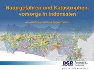 Naturgefahren und Katastrophenvorsorge in Indonesien