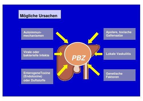 PBZ + Autoimmunhepatitis - Gastroenterologische ...