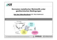 Korrosion metallischer Werkstoffe unter ... - Geothermie