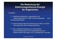 Die biologische Wirkung von Elektrosmog