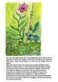 13 La planta presumida - Contes del Món - Page 6