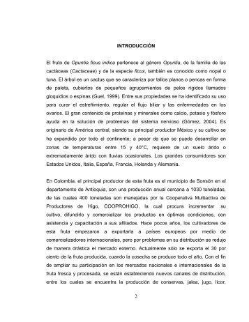 2 INTRODUCCIÓN El fruto de Opuntia ficus indica pertenece al ...
