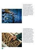 El cultivo de patatas profesional; germinación precoz - Nivaa - Page 4