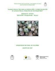alianza productiva para la producción y comercialización de uchuva ...