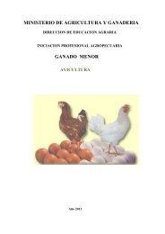 Avicultura - Ministerio de Agricultura y Ganadería