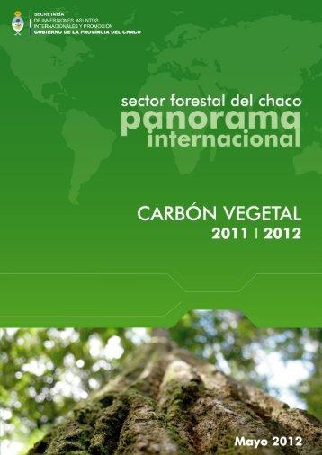 PDF - Chaco Internacional