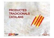 presentació gràfica - CCOO de Catalunya