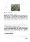 Producción de Oregano - Page 6