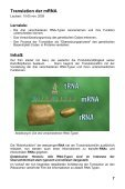 Molekulare Genetik - GIDA - Seite 7