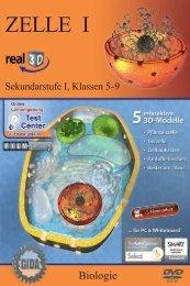 Zelle I – real3D - GIDA