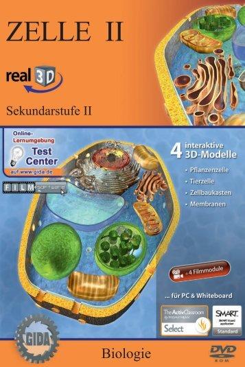 Zelle II – real3D - GIDA