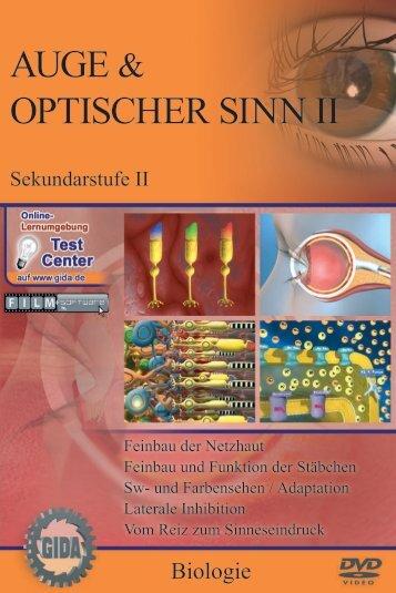 Auge & optischer Sinn II - GIDA