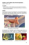 Hormonsystem I - Grundlagen der Regulation - GIDA - Seite 5