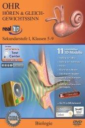 Ohr - Hören & Gleichgewichtssinn - real3D - GIDA