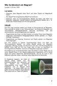 Magnetismus - GIDA - Seite 7