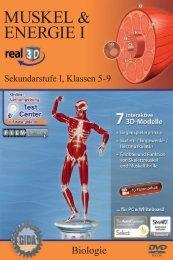 Muskel & Energie I – real3D - GIDA