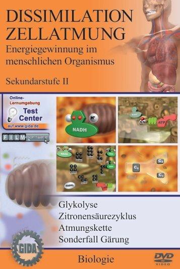 Dissimilation - Zellatmung - Energiegewinnung im ... - GIDA