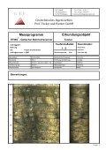 Auswertebeispiel für Bohrlochscanner ETIBS - Geotechnisches ... - Seite 4
