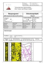 Auswertebeispiel für Bohrlochscanner ABF - Geotechnisches ...
