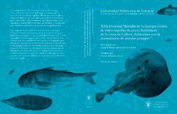 Tesis Doctoral - RiuNet - Universidad Politécnica de Valencia